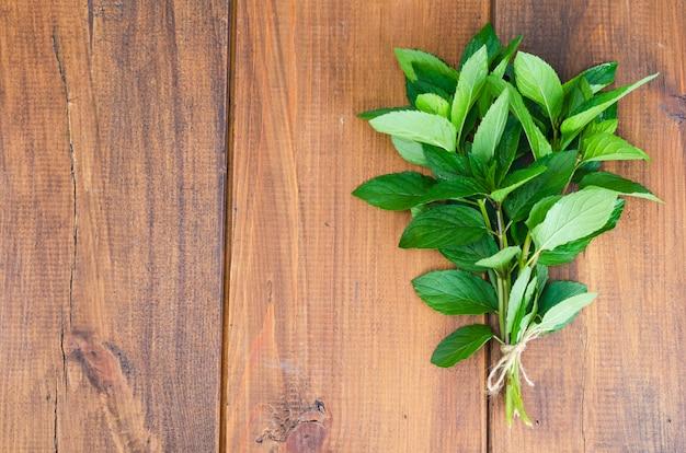Bouquet de menthe verte. photo Photo Premium