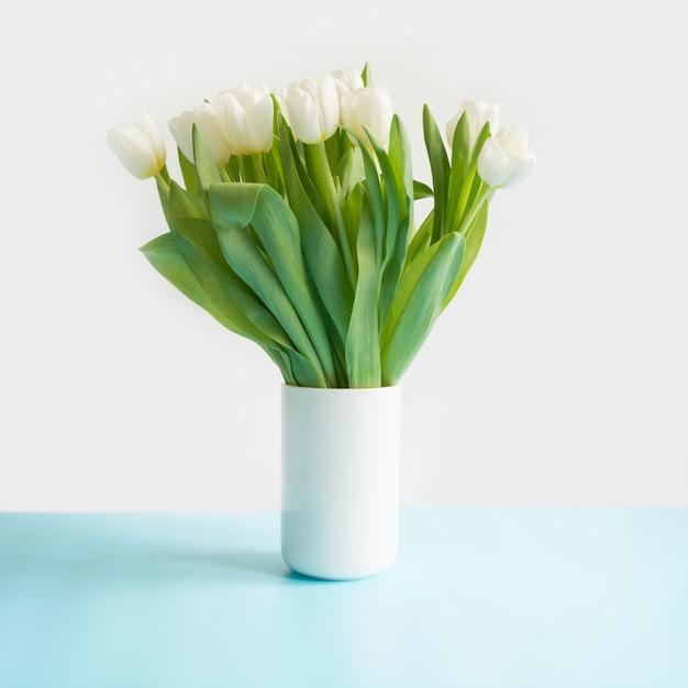 Bouquet De Tulipe Blanche Dans Un Vase Sur Bleu. Fête Des Mères. Photo Premium