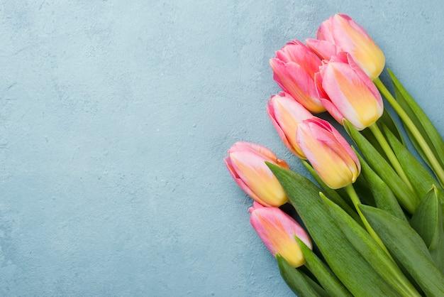 Bouquet De Tulipes Copie Espace Photo gratuit