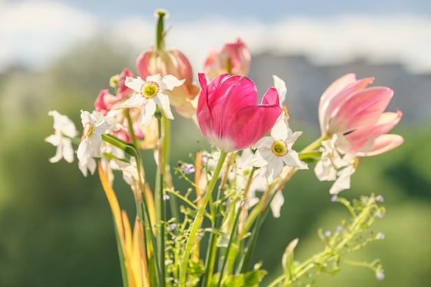 Bouquet de tulipes à fleurs printanières et jonquilles blanches Photo Premium