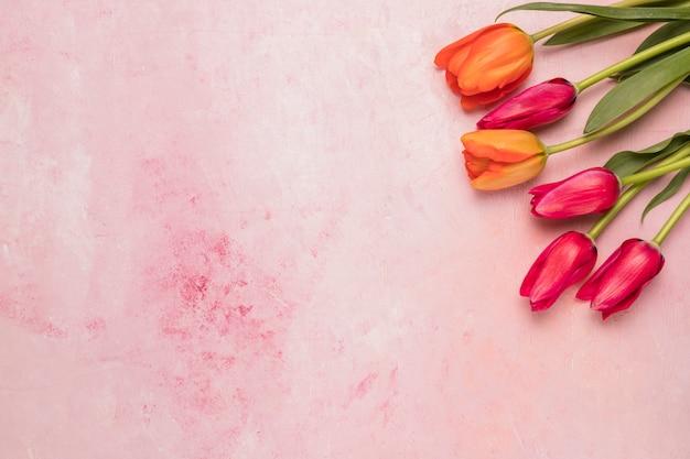 Bouquet de tulipes rouges et orange Photo gratuit