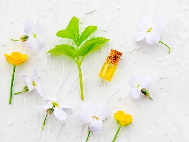 Bouteille d'huile essentielle à la sauge fraîche aux herbes, mise en place à plat sur une table en bois bleue. médecine alternative, santé, vitamines Photo Premium