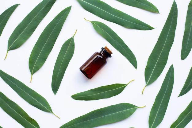Bouteille d'huile d'eucalyptus avec des feuilles blanches. Photo Premium