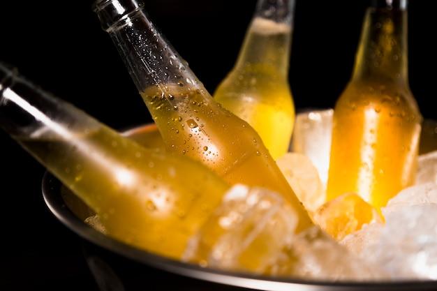 Bouteilles de bière avec de la glace Photo gratuit