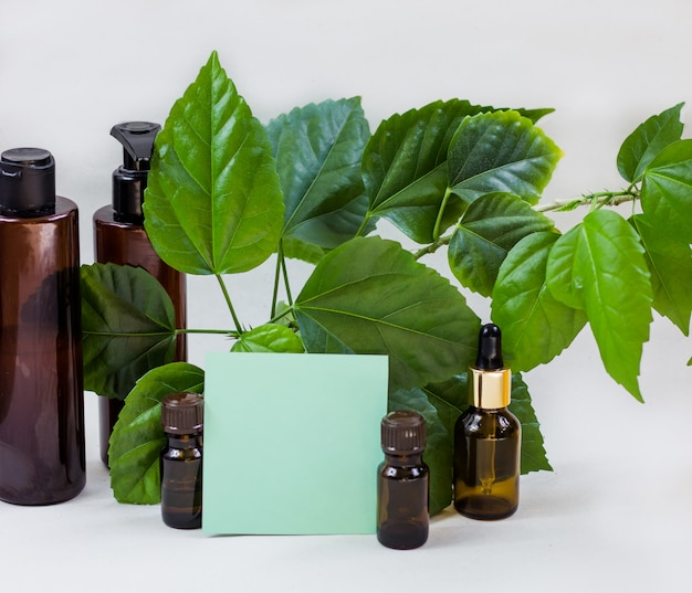 Bouteilles cosmétiques sombres et feuilles naturelles vertes sur fond clair Photo Premium