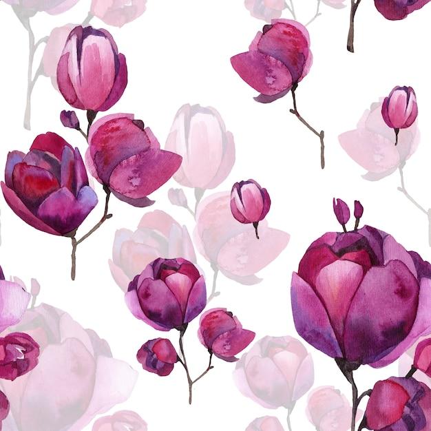 Boutons de magnolia rouge et fleurs sans feuilles. Photo Premium