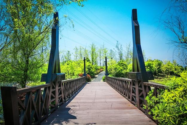 Bow bridge central park new york city Photo gratuit
