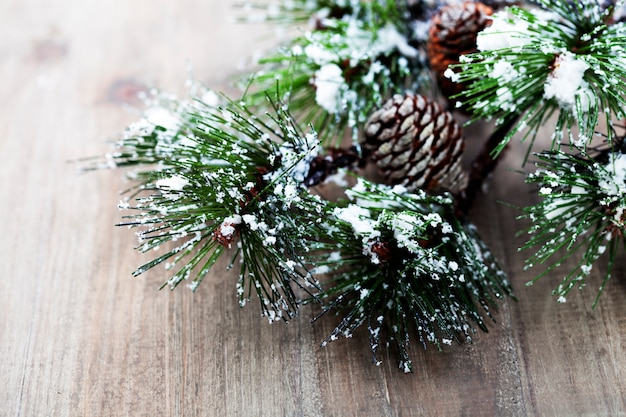 Branche d'arbre de pin de noël Photo Premium