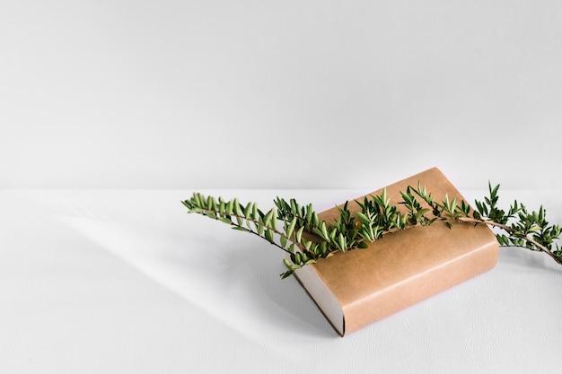 Branche d'arbre vert sur le livre brun isolé sur fond blanc Photo gratuit