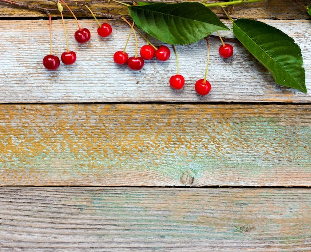 Branche de cerises mûres rouges sur fond de vieux planches de grange Photo Premium
