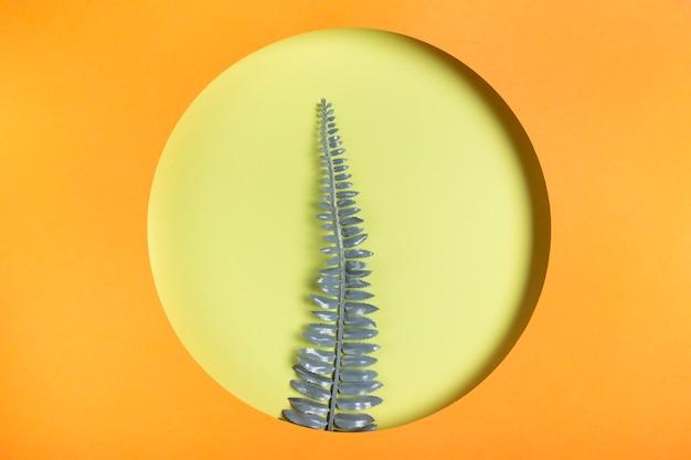 Branche de feuille dans un cadre orange Photo gratuit