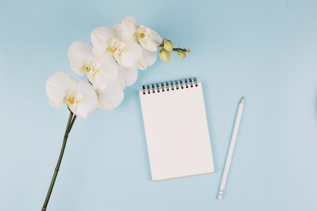 Branche de fleur d'orchidée blanche; bloc-notes à spirale et crayon sur fond bleu Photo gratuit