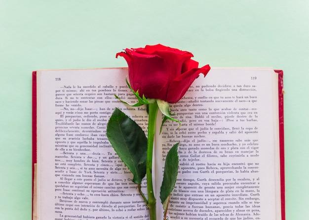 Branche de rose rouge sur un gros livre Photo gratuit
