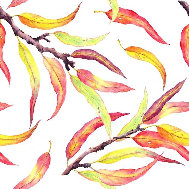 Branches d'arbres automne avec des feuilles jaunes et rouges. modèle sans couture. aquarelle Photo Premium