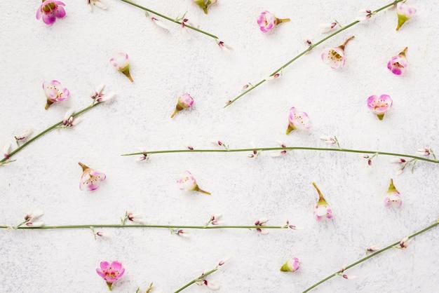 Branches De Fleurs Sur Table Photo gratuit