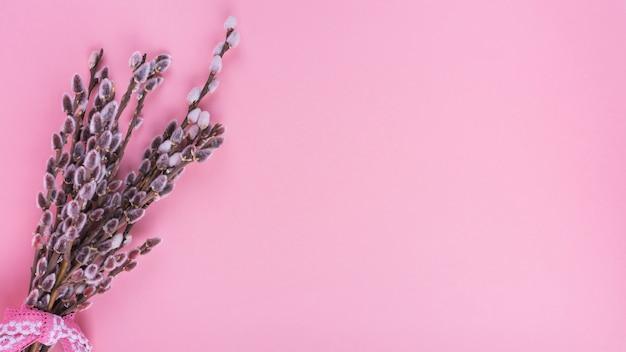 Branches De Saule Avec Chatons Sur Table Rose Photo gratuit