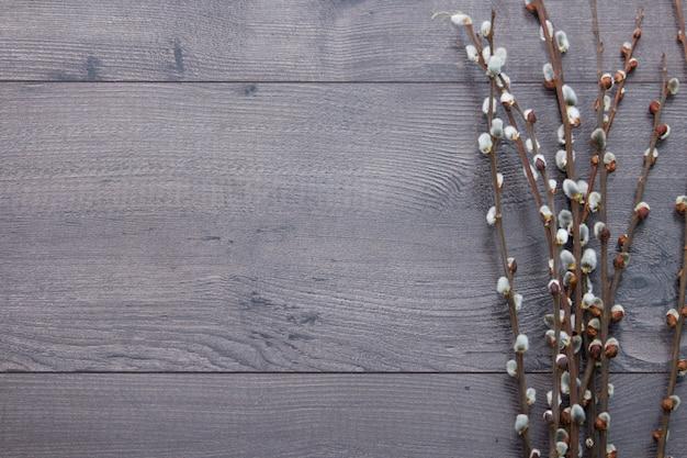 Branches de saule sur un fond en bois gris. les branches de saule au début du printemps. appartement poser, vue de dessus avec un espace vide. Photo Premium