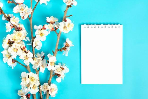 Brins D'abricotier Avec Des Fleurs Sur Fond Bleu. Place Pour Le Texte. Photo Premium
