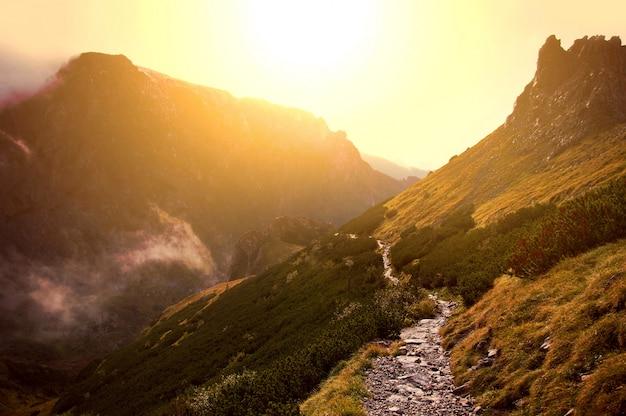 Brouillard dans les montagnes. Photo gratuit