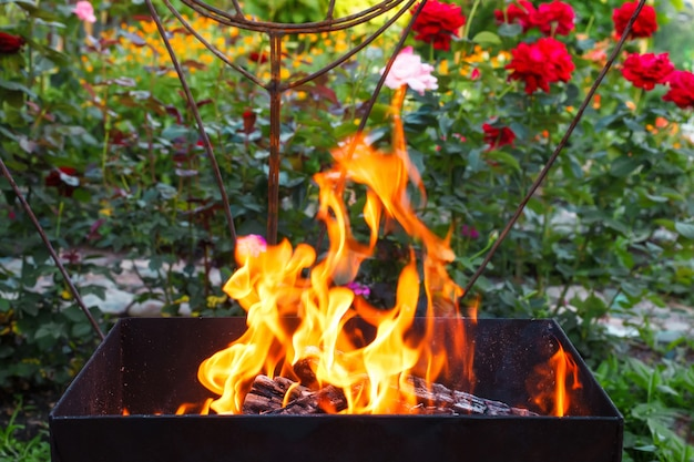 Brûler Du Bois Dans Un Brasero. Feu, Flammes. Grill Ou Barbecue Photo Premium