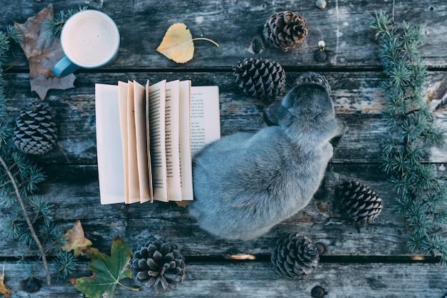 Bunny Pet Et Livre Sur Une Table En Bois Avec Café Et Pins En Plein Air Photo Premium