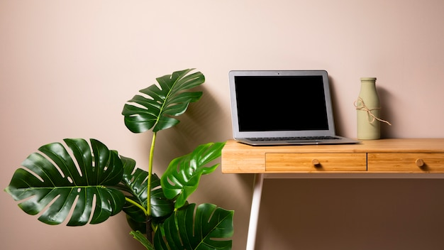 Bureau en bois avec ordinateur portable et plante Photo gratuit