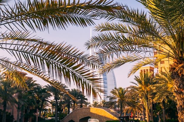 Burj al arab dubai Photo Premium