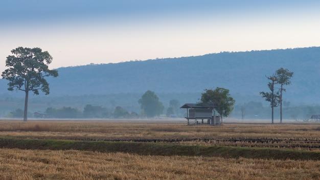 Cabane pour les agriculteurs avec un fond de montagne Photo Premium