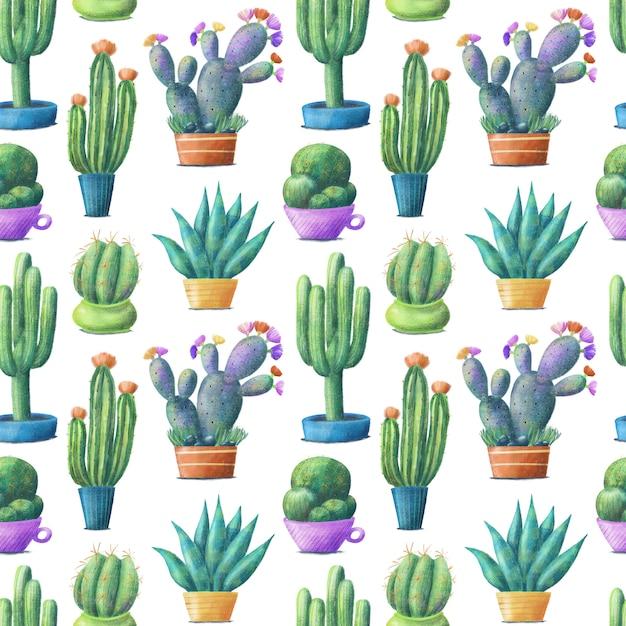 Cactus coloré mignon en pots, modèle sans couture sur fond blanc Photo Premium