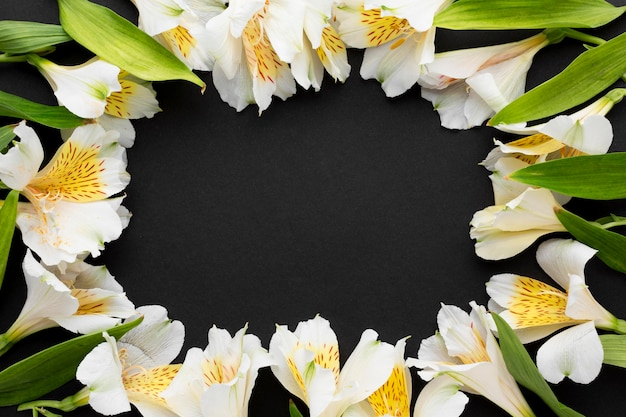 Cadre D'alstroemeria Blanc Plat Photo gratuit