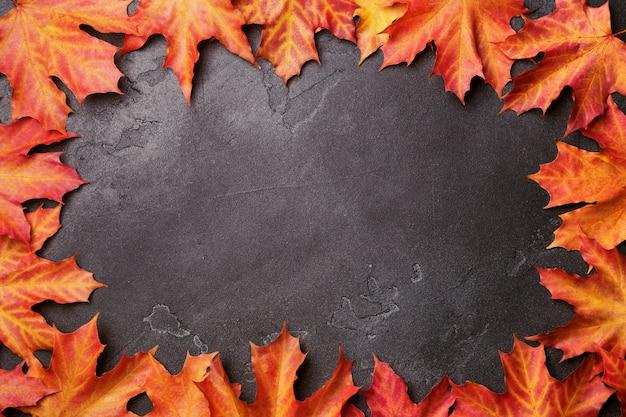 Cadre automne d'érable vif rouge et jaune vif feuilles sur fond noir chatoyant. Photo Premium