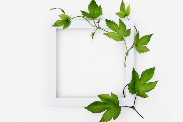 Cadre blanc avec houblon et feuilles Photo Premium