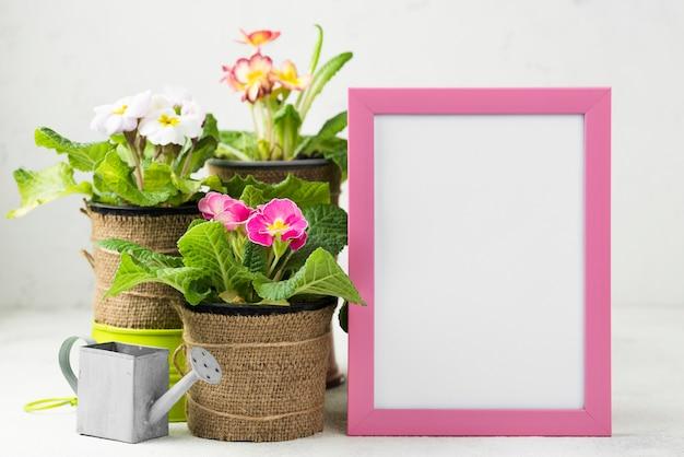 Cadre à Côté Des Pots De Fleurs Photo gratuit