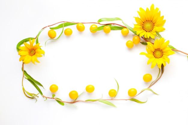 Cadre flatlay beauté été jaune sur fond blanc de close-up saule et prune cerise jaune. Photo Premium
