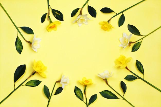 Cadre de fleurs de narcisse ou jonquille sur fond jaune Photo Premium