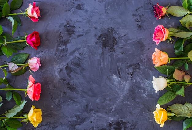 Cadre floral avec des roses colorées sur fond gris / noir, plat poser, vue de dessus Photo Premium