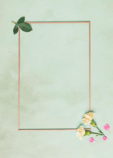 Cadre minimaliste avec des fleurs d'oeillets et des feuilles sur fond bleu Photo gratuit