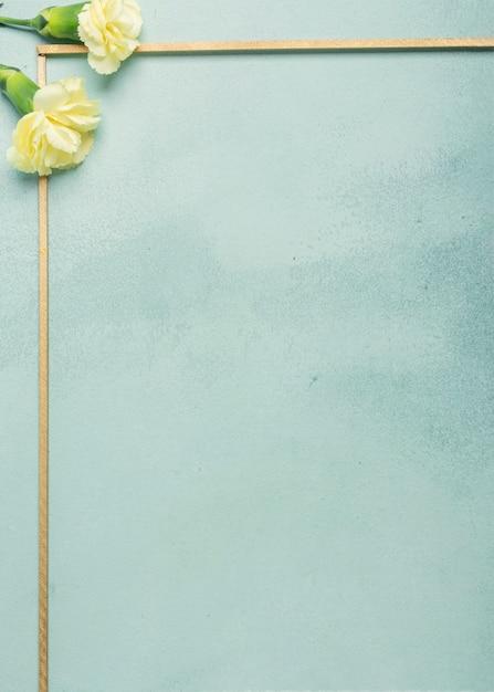 Cadre minimaliste avec des fleurs d'oeillets sur fond bleu Photo gratuit