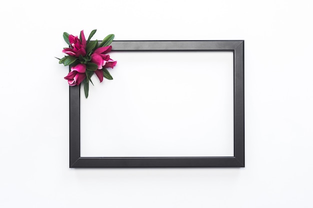 Cadre noir fleur rose fond blanc moderne Photo gratuit