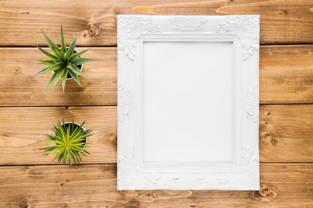 Cadre ornemental plat à côté de plantes Photo gratuit