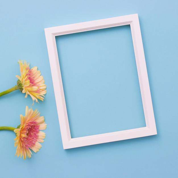 Cadre photo et fleur jaune sur fond bleu clair. été plat poser. Photo Premium