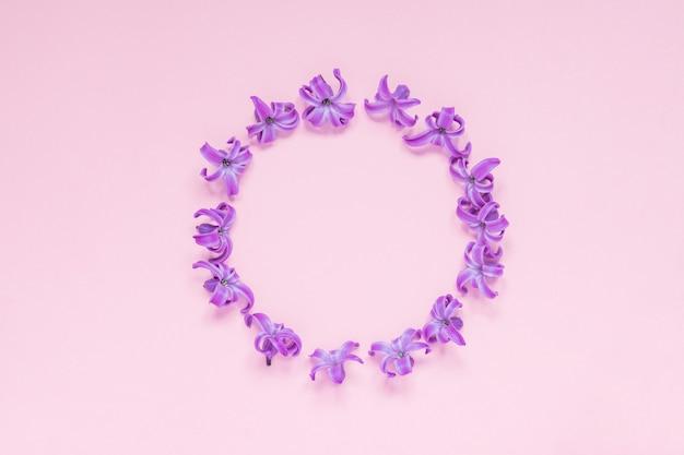Cadre rond de fleurs de jacinthe pourpre pastel sur fond rose dégradé. couronne florale. Photo Premium