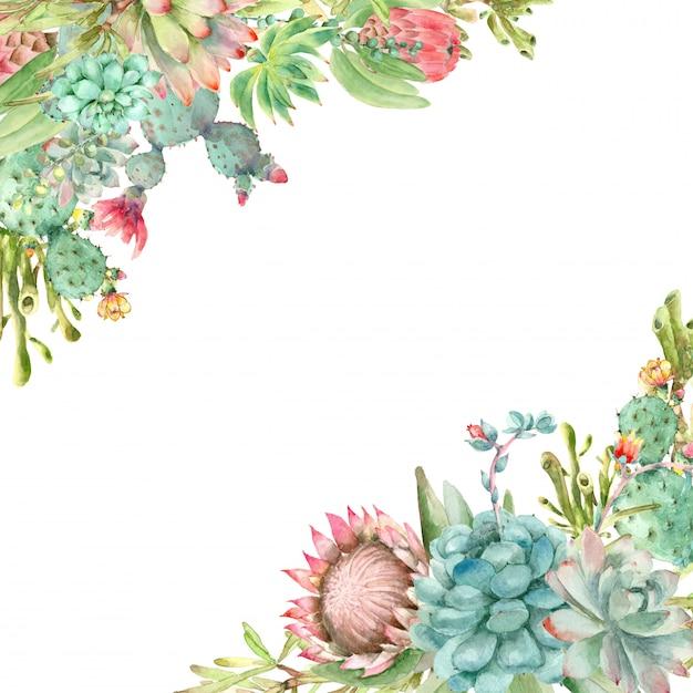 Cadre De Succulentes Aquarelle Photo Premium