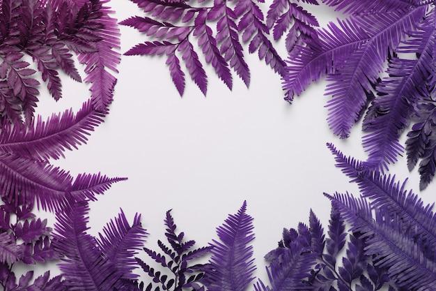 Cadre Tropical En Feuilles De Palmier Ou De Fougère Avec Fond D'espace De Copie. Mise à Plat. Photo Premium