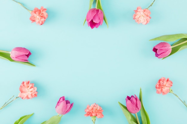 Cadre de tulipes Photo gratuit
