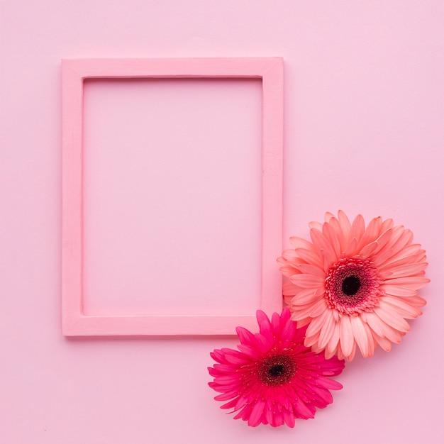 Cadres roses avec des fleurs et espace de copie Photo gratuit
