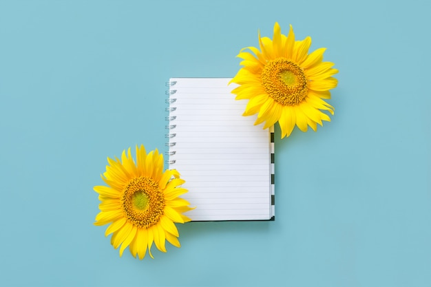 Cahier blanc ouvert école et tournesol sur fond bleu Photo Premium