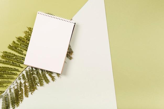 Cahier sur brindille de fougère Photo gratuit