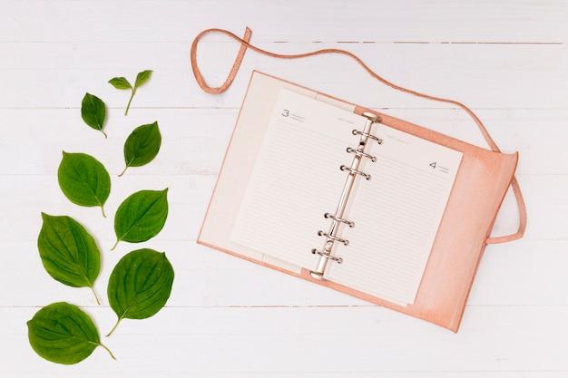 Cahier rose avec feuilles de hêtre Photo gratuit