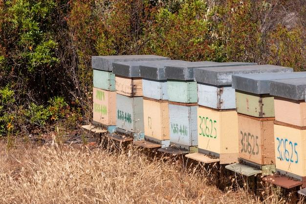 Caisses de ruches traditionnelles en nid d'abeilles Photo Premium